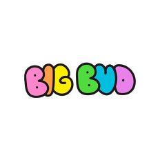 Big Bud Logo